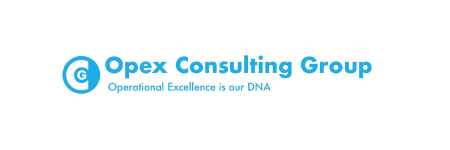 Opex Consulting Group (Indonesia)